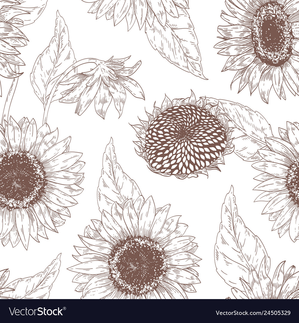 Monochrome floral seamless pattern with sunflower