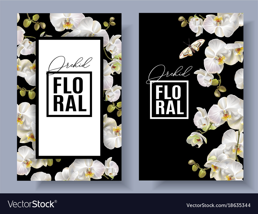 Floral orchid vertical banners vector image