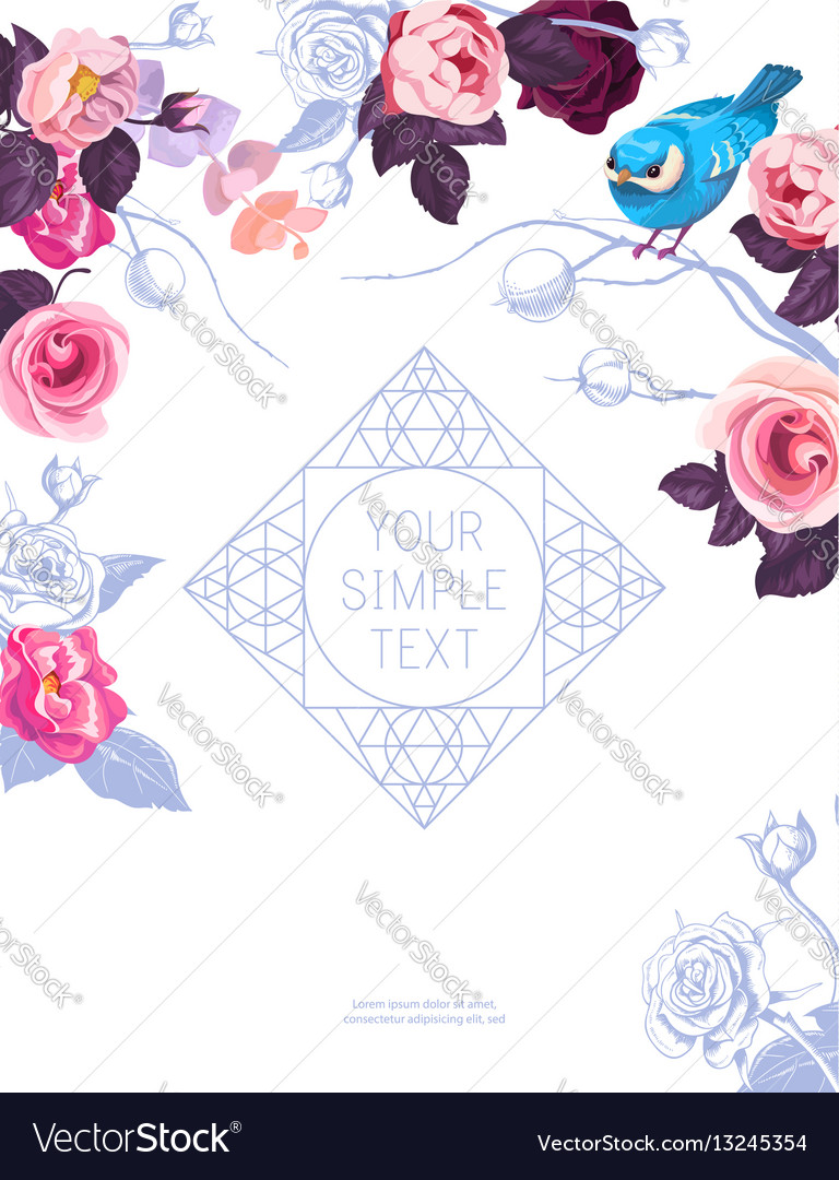 Flyer template with lovely half-colored rose