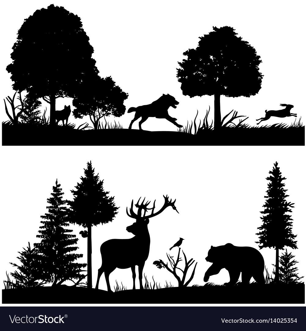 Wild animals silhouettes in green fir forest