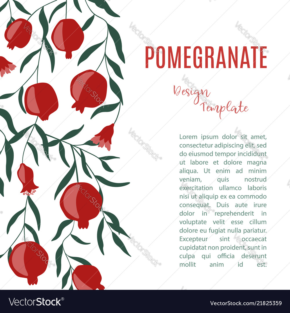 Design template with pomegranate fruits hand