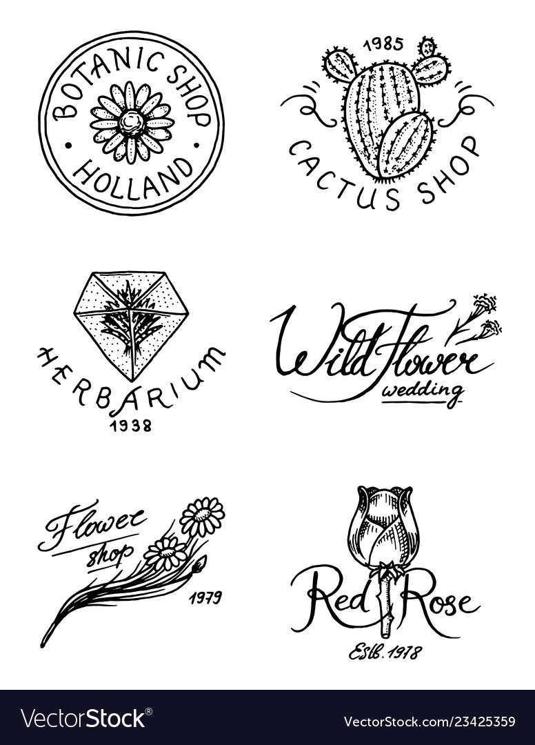 Flower shop emblems and logo vintage bouquet