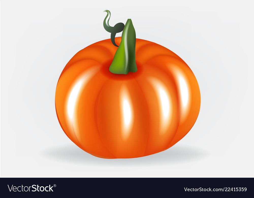 Pumpkin logo design