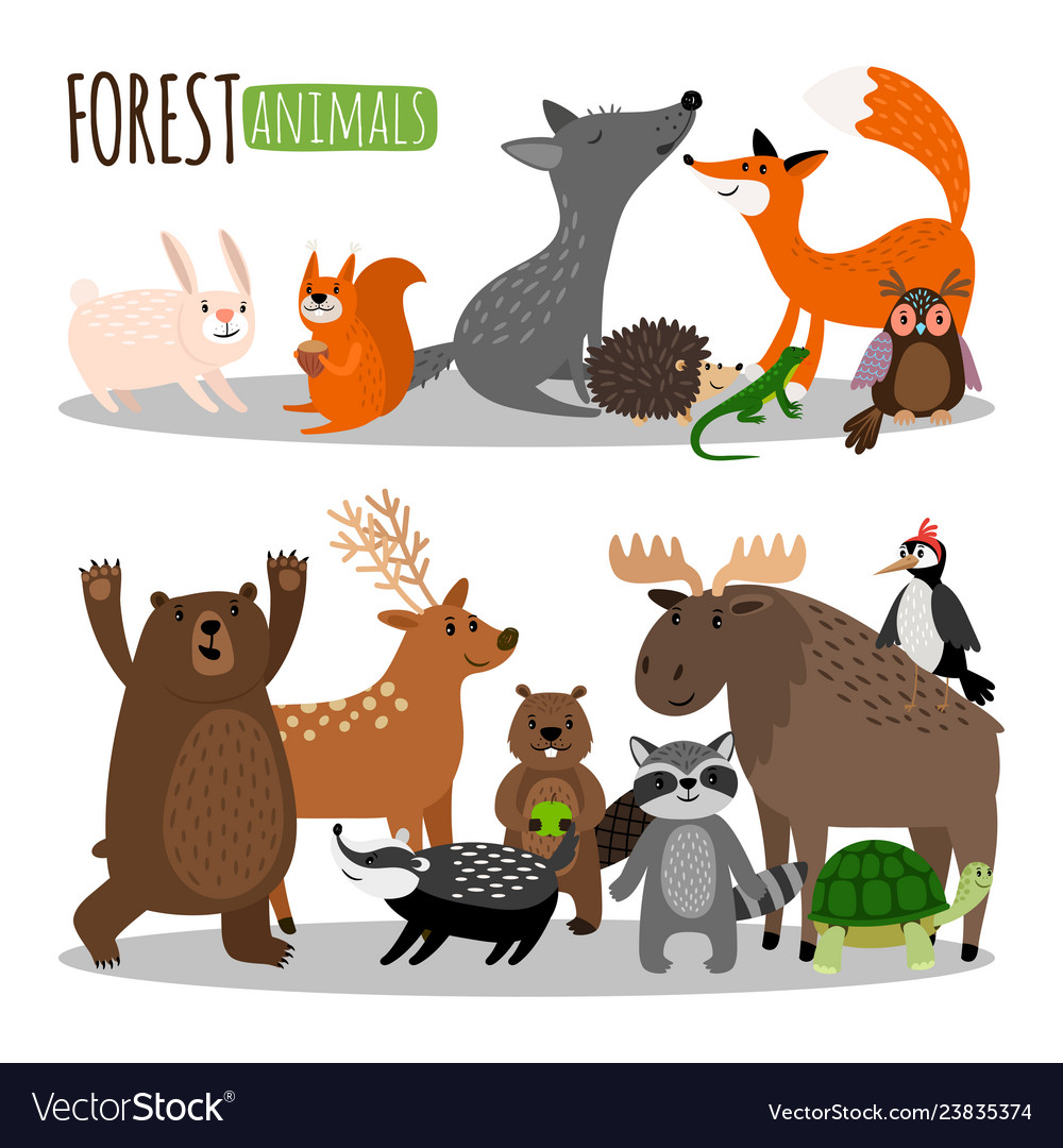 Cute forest animals collection isolated on