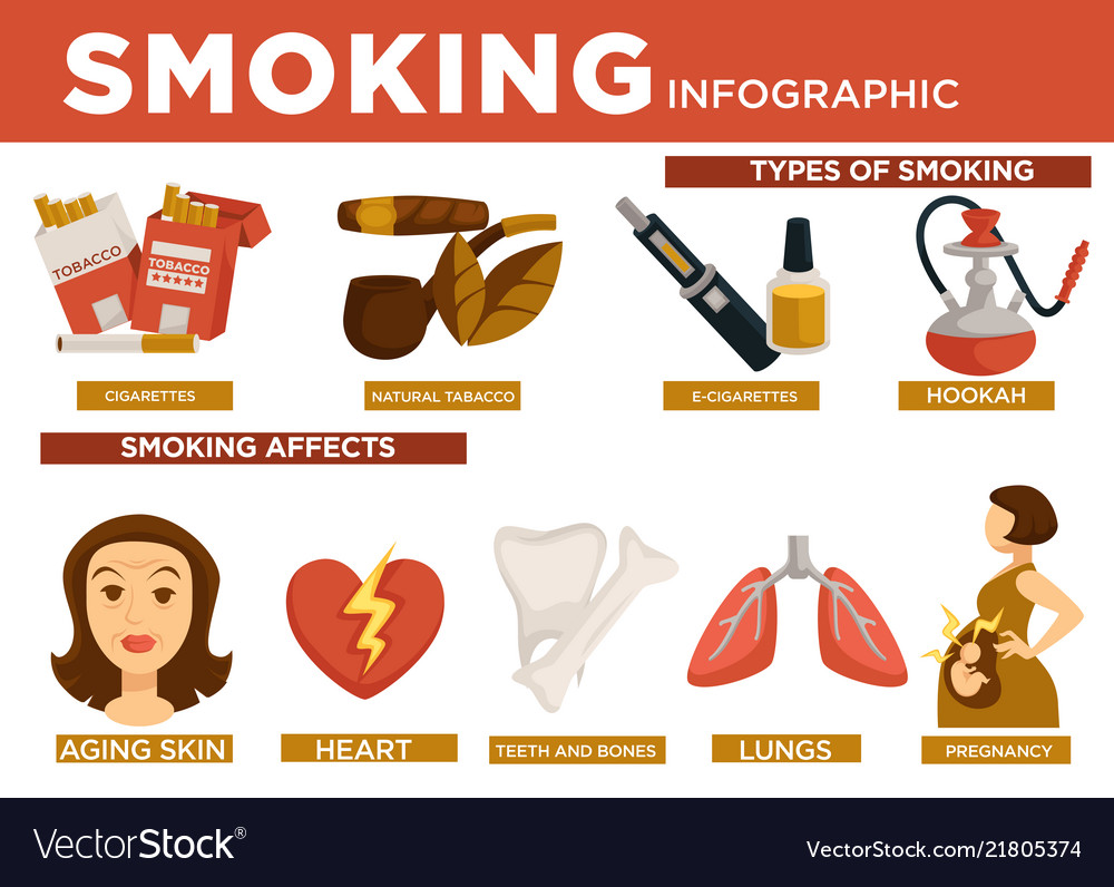 Smoking infographic types and affect on body