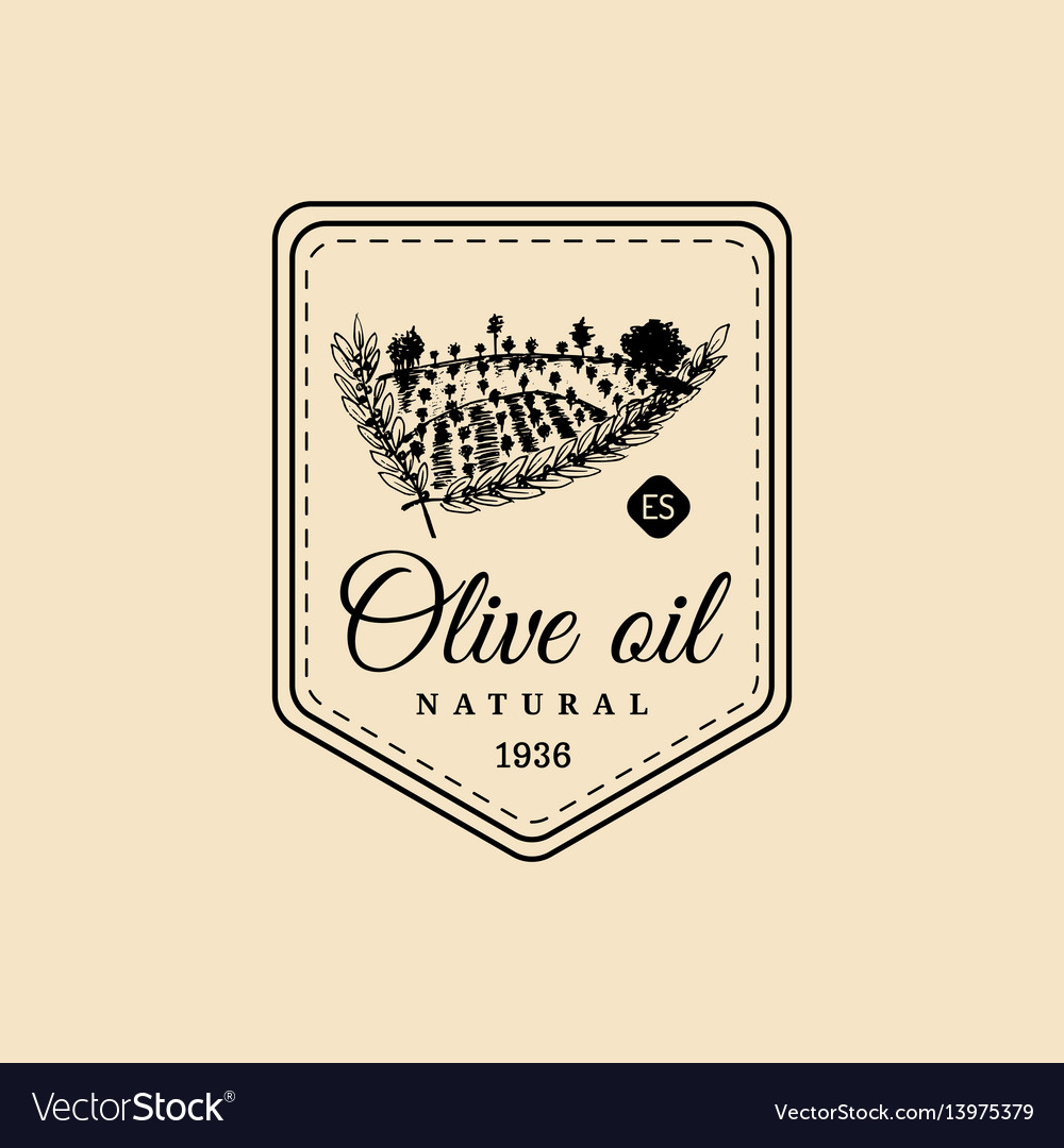 Vintage olive oil logo retro emblem with