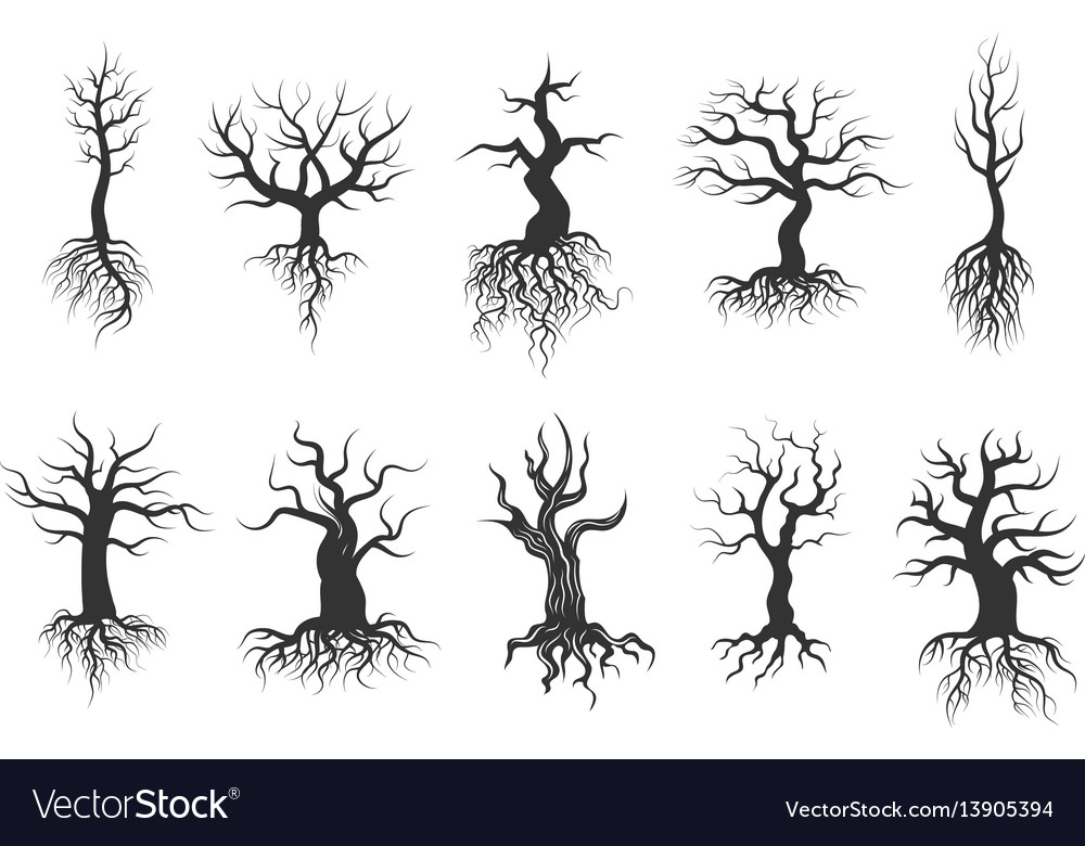 Old tree silhouettes with roots set