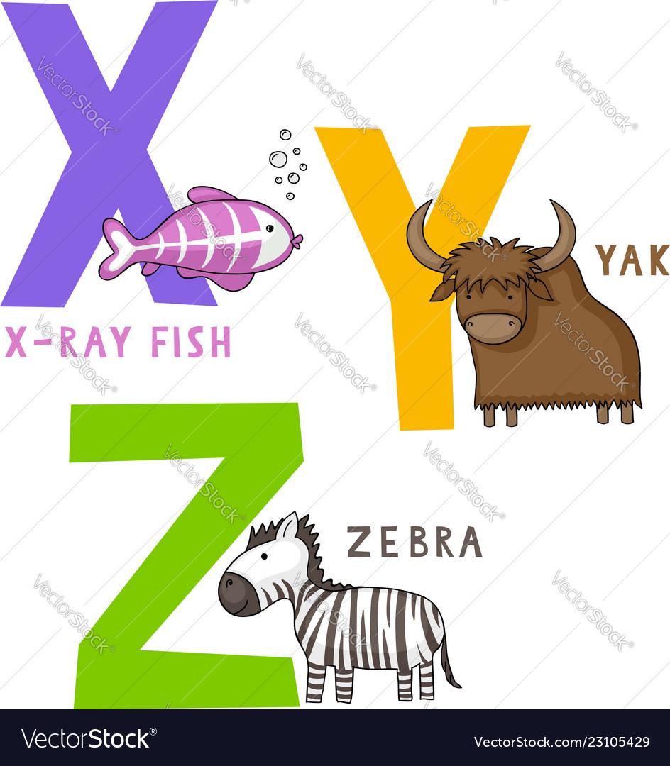 Animal alphabet x y and z