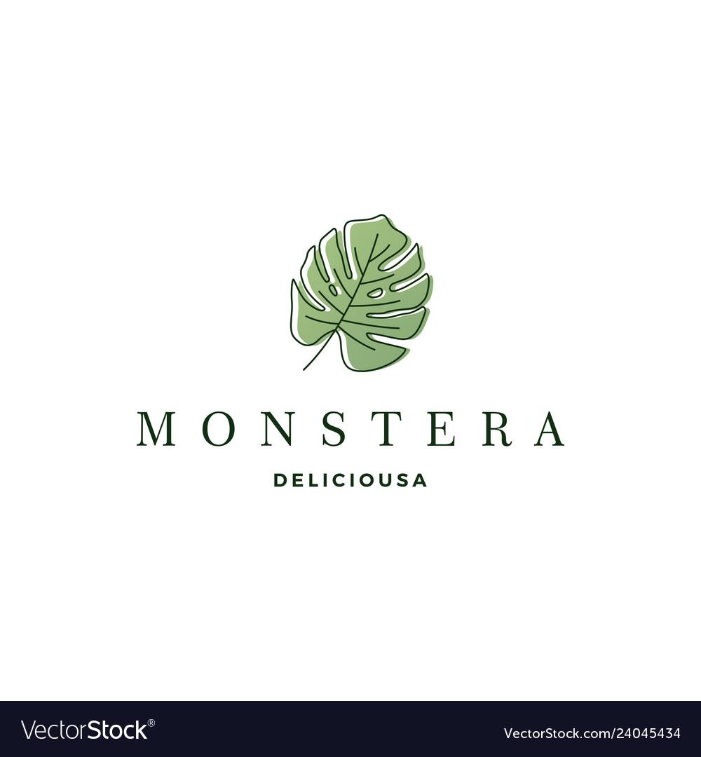 Monstera deliciosa deliciousa leaf logo icon
