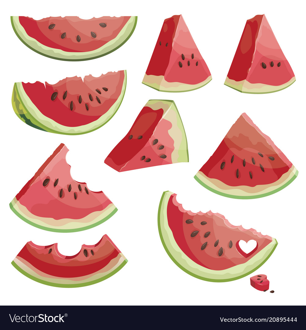 A set of pieces of watermelon a collection of