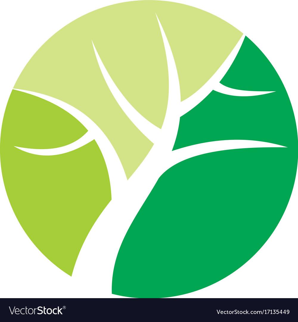 Round green tree nature logo vector image
