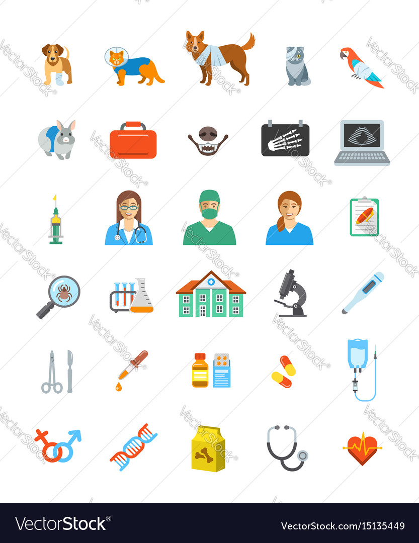 Vet clinic services icons vector image