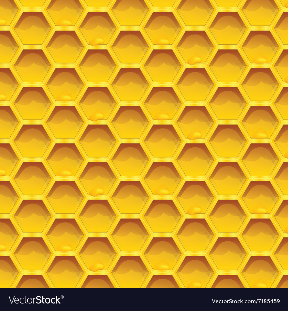 Honeycomb colorfull Seamless pattern honeycombs
