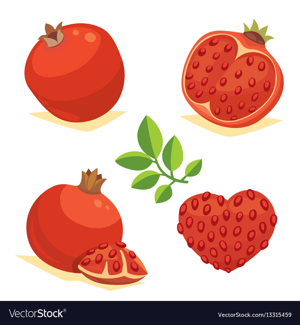Whole and cut pomegranate icon set cartoon healty