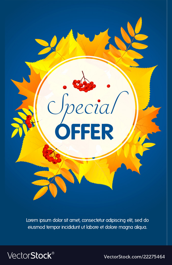 Autumn special offer concept background flat
