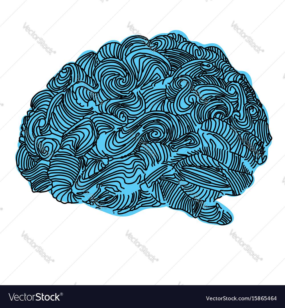 Brain idea doodle concept vector image
