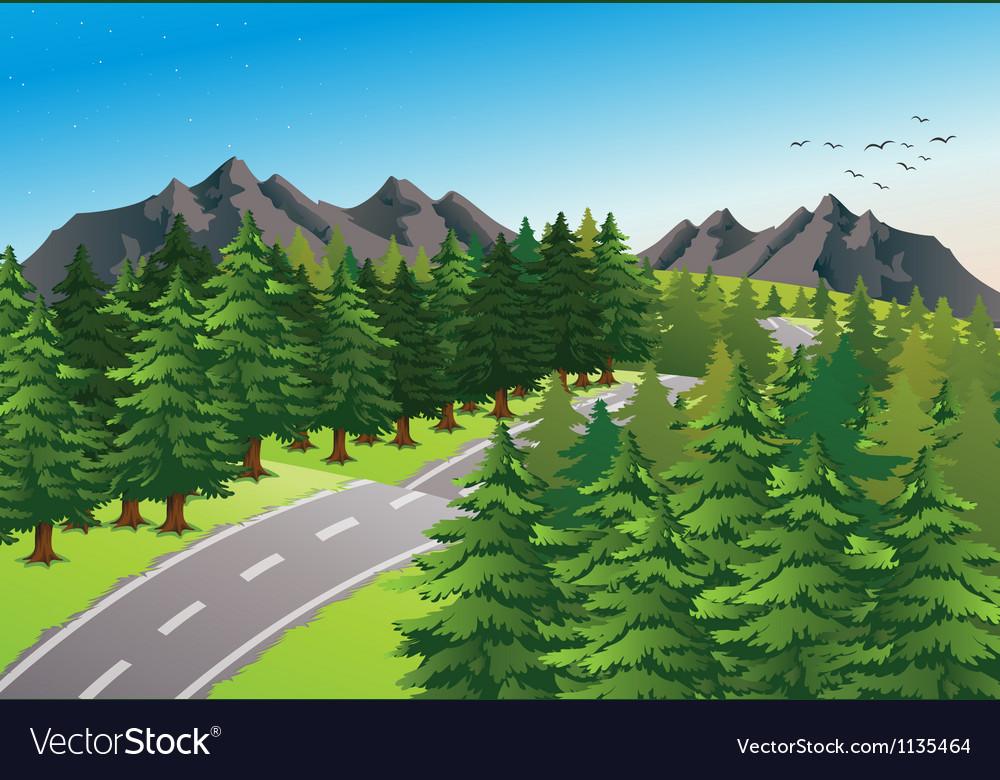 Road in beautiful nature vector image
