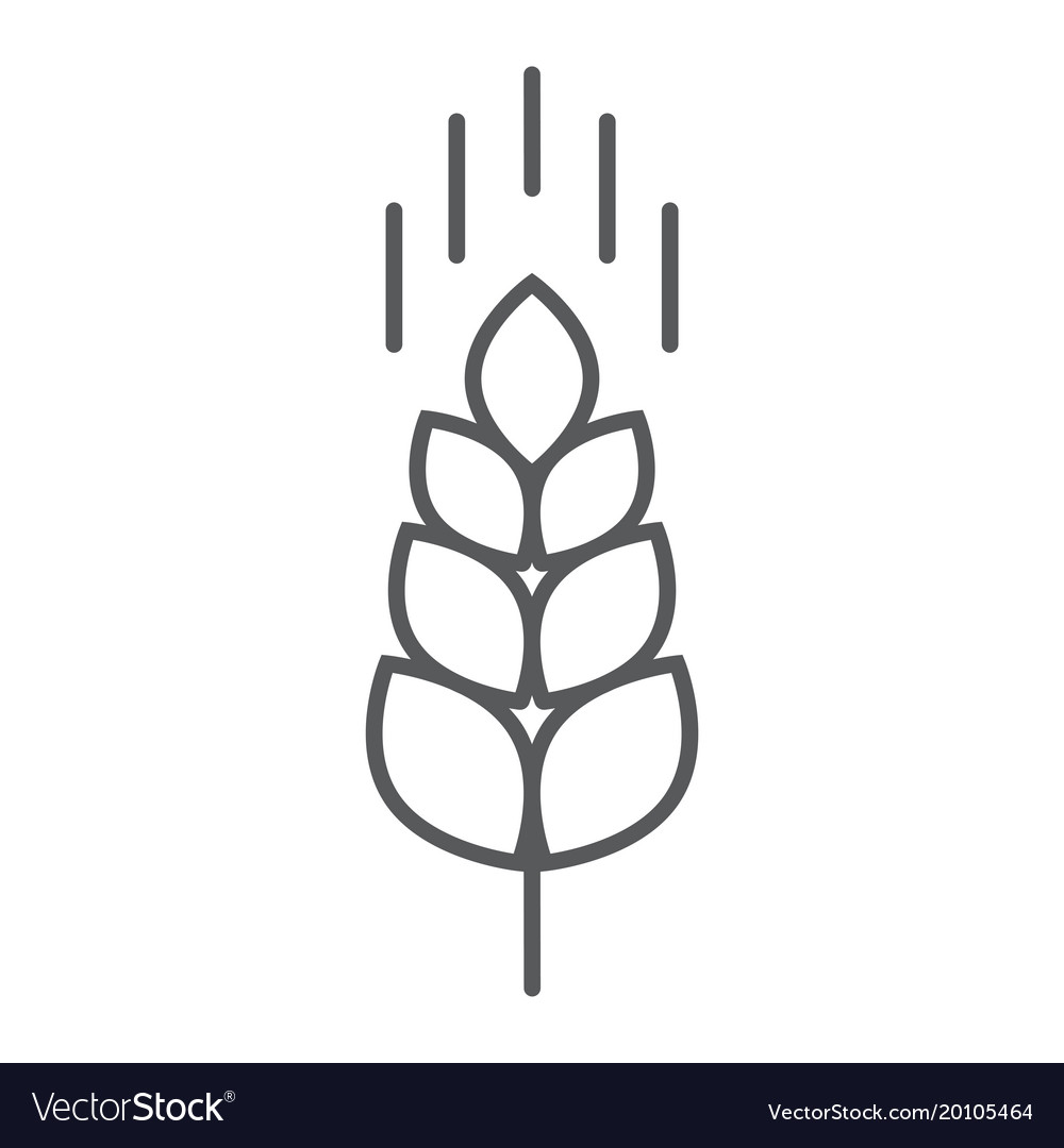Wheat ear thin line icon farming and agriculture