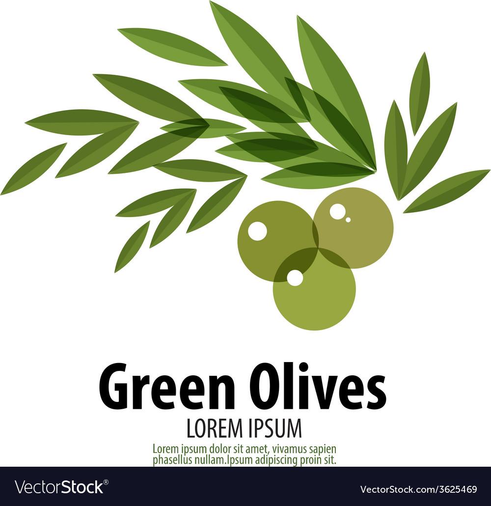 Green Olives logo design template harvest or food