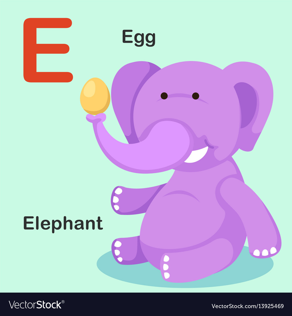 Isolated animal alphabet letter e-egg elephant Vector Image