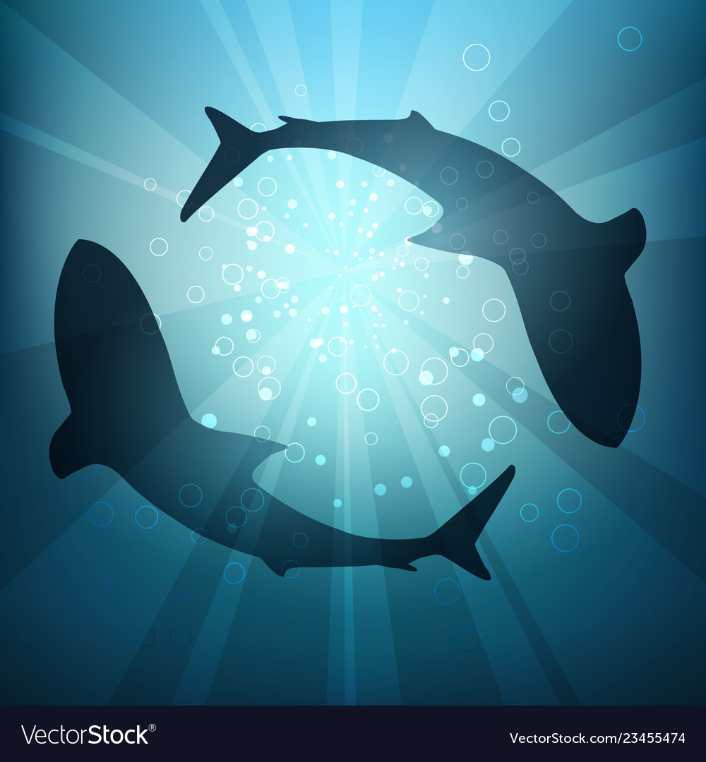Silhouettes of sharks in the water