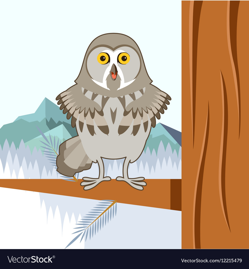 Grey Owl on the winter tree flat background