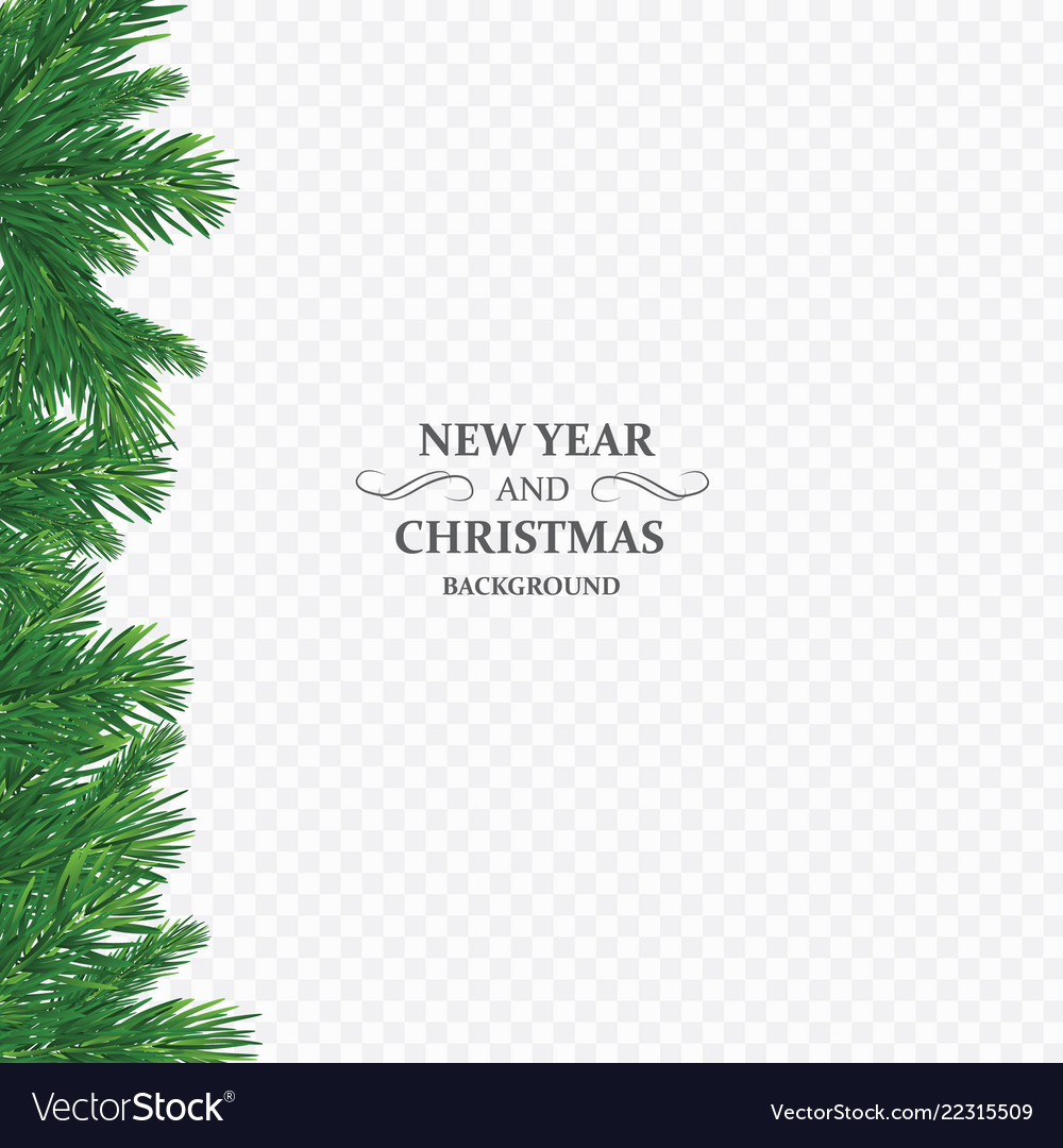 Background with christmas tree branches and