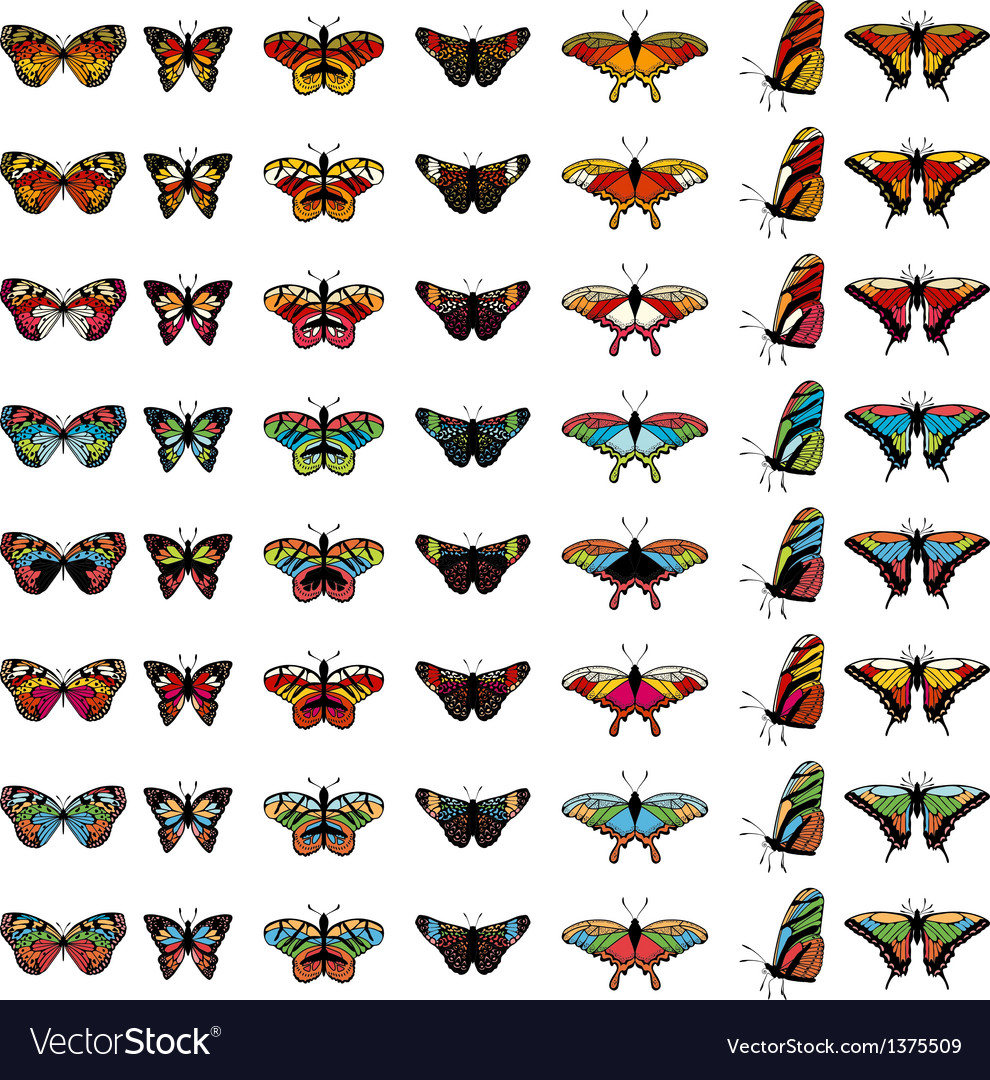 Butterfly color set
