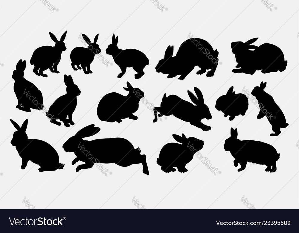 Rabbit animal action silhouette