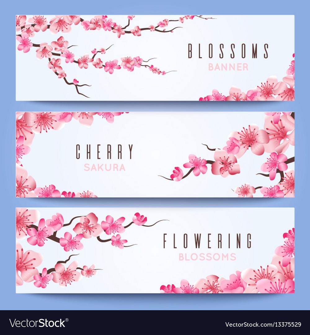 wedding banners template with spring japan sakura vector image