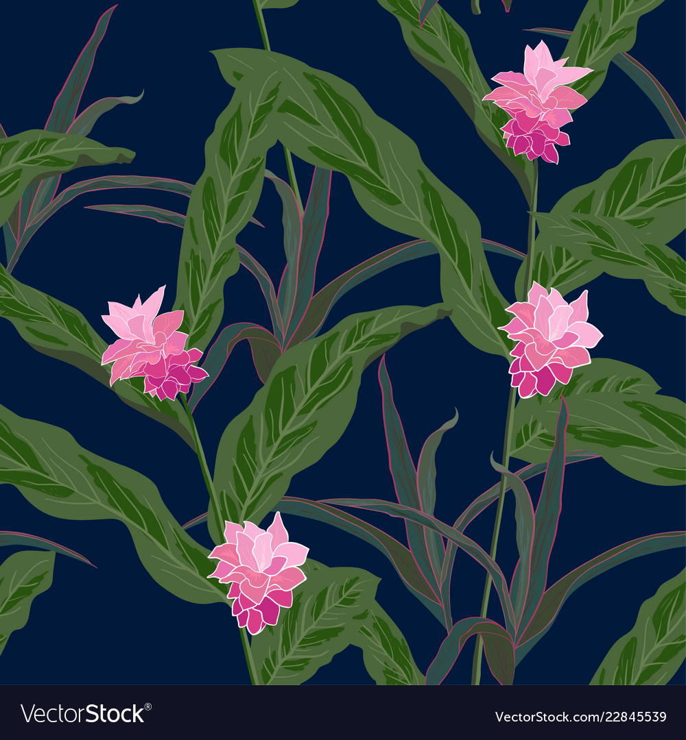 Beautiful tropical flowers seamless pattern