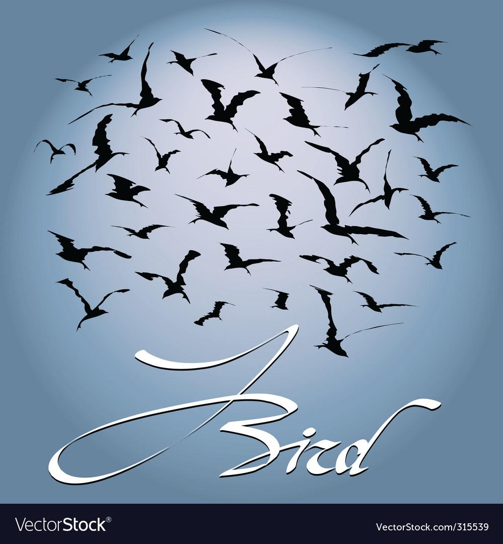 Flock of birds vector image