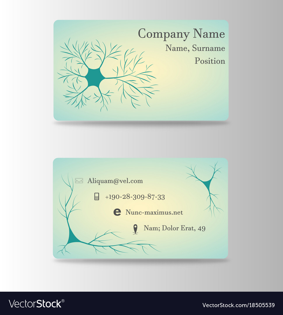 Neurosurgeon or brain doctor business card vector image colourmoves