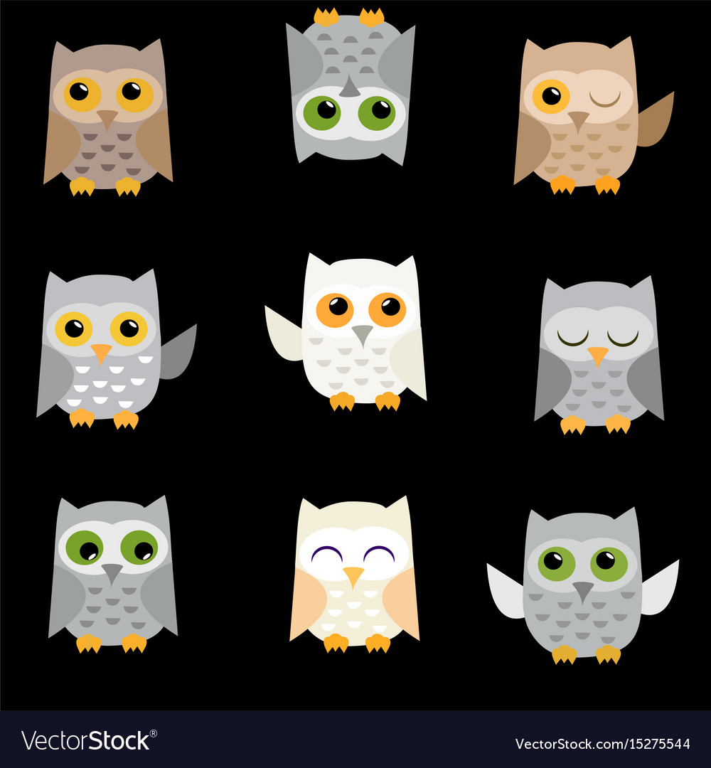 Owls on a black background vector image