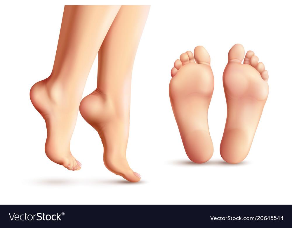 Realistic Female Feet Set Vector Image