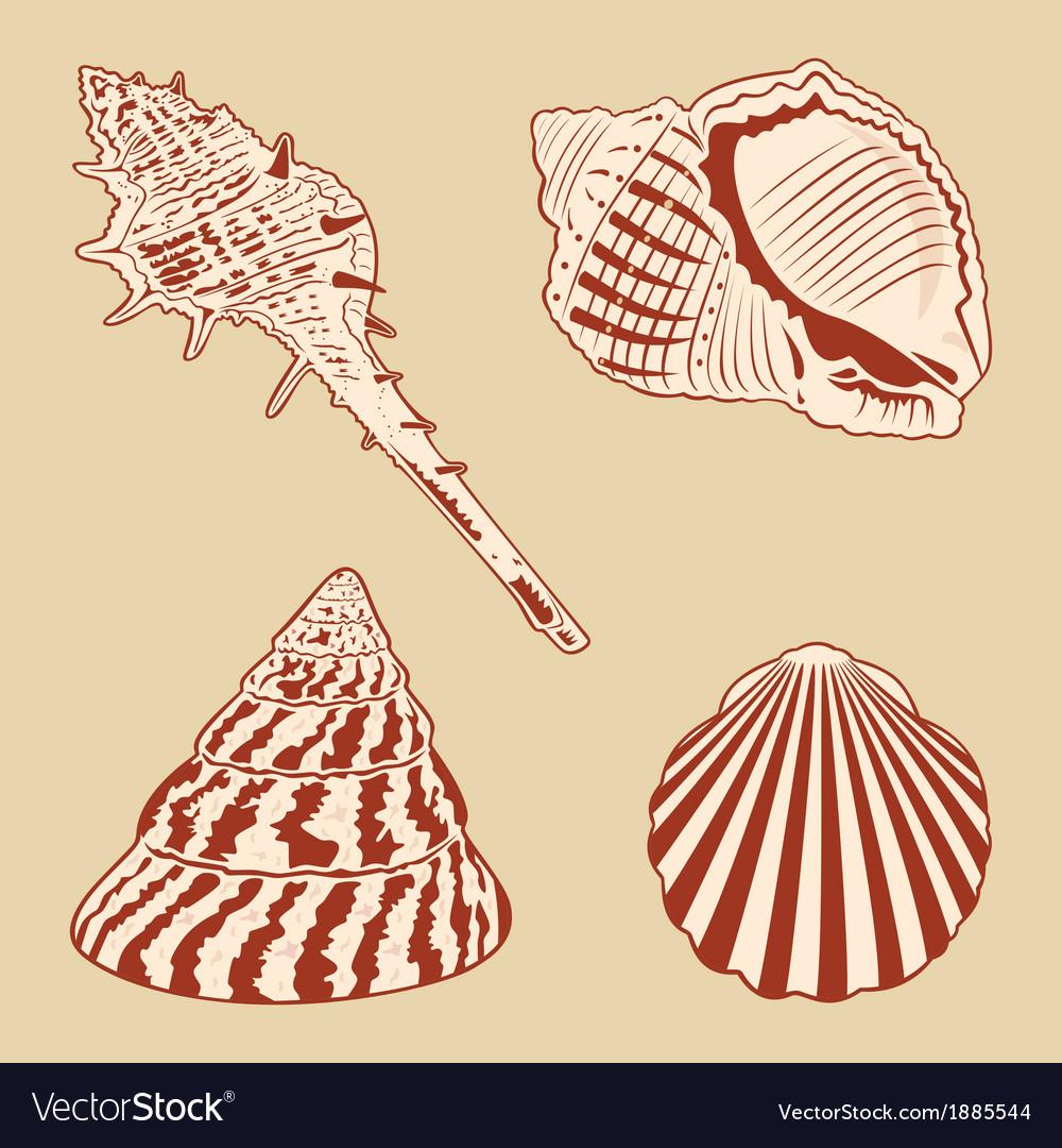 Vintage Shells Set EPS10 vector image