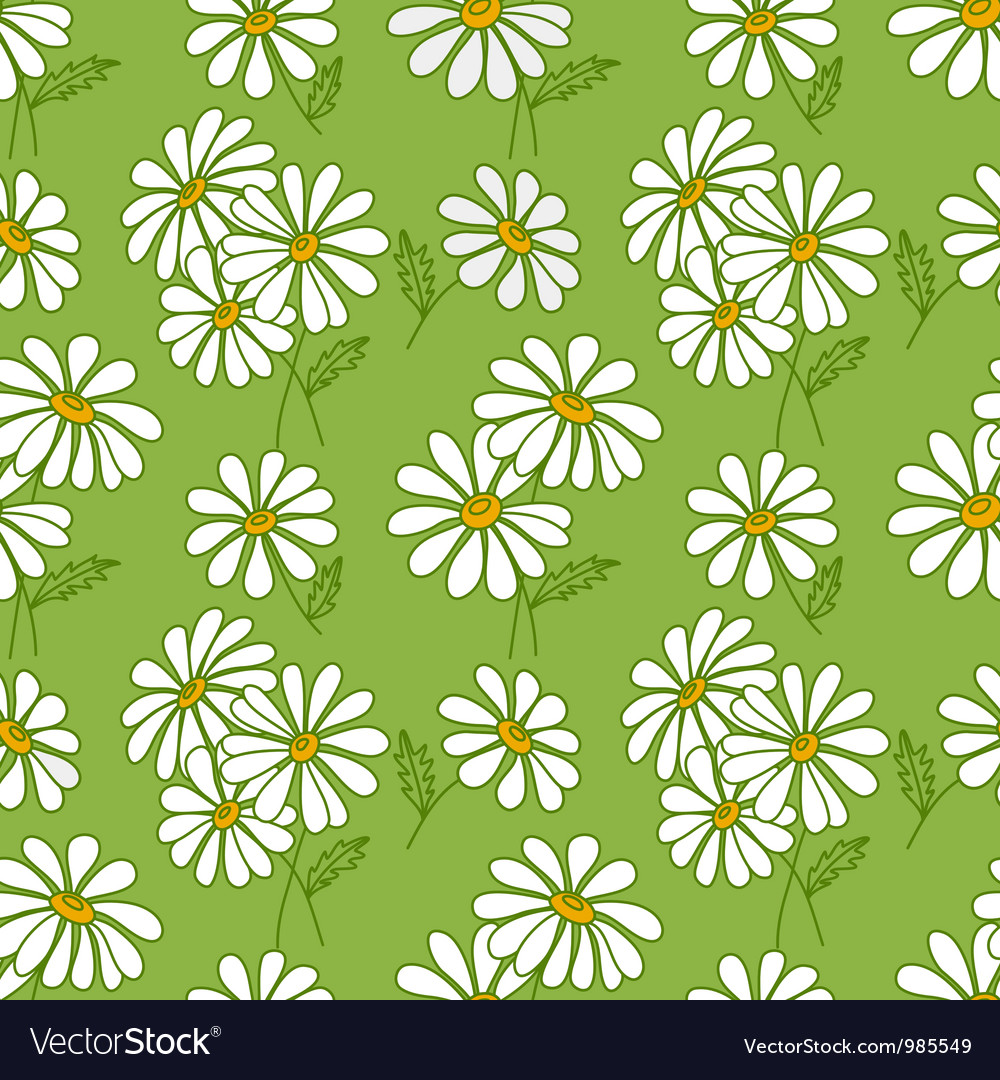 Green seamless daisy pattern vector image