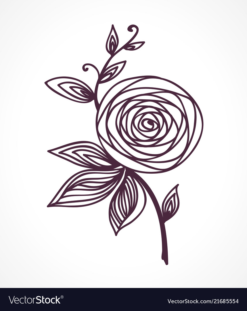 Rose stylized flower hand drawing
