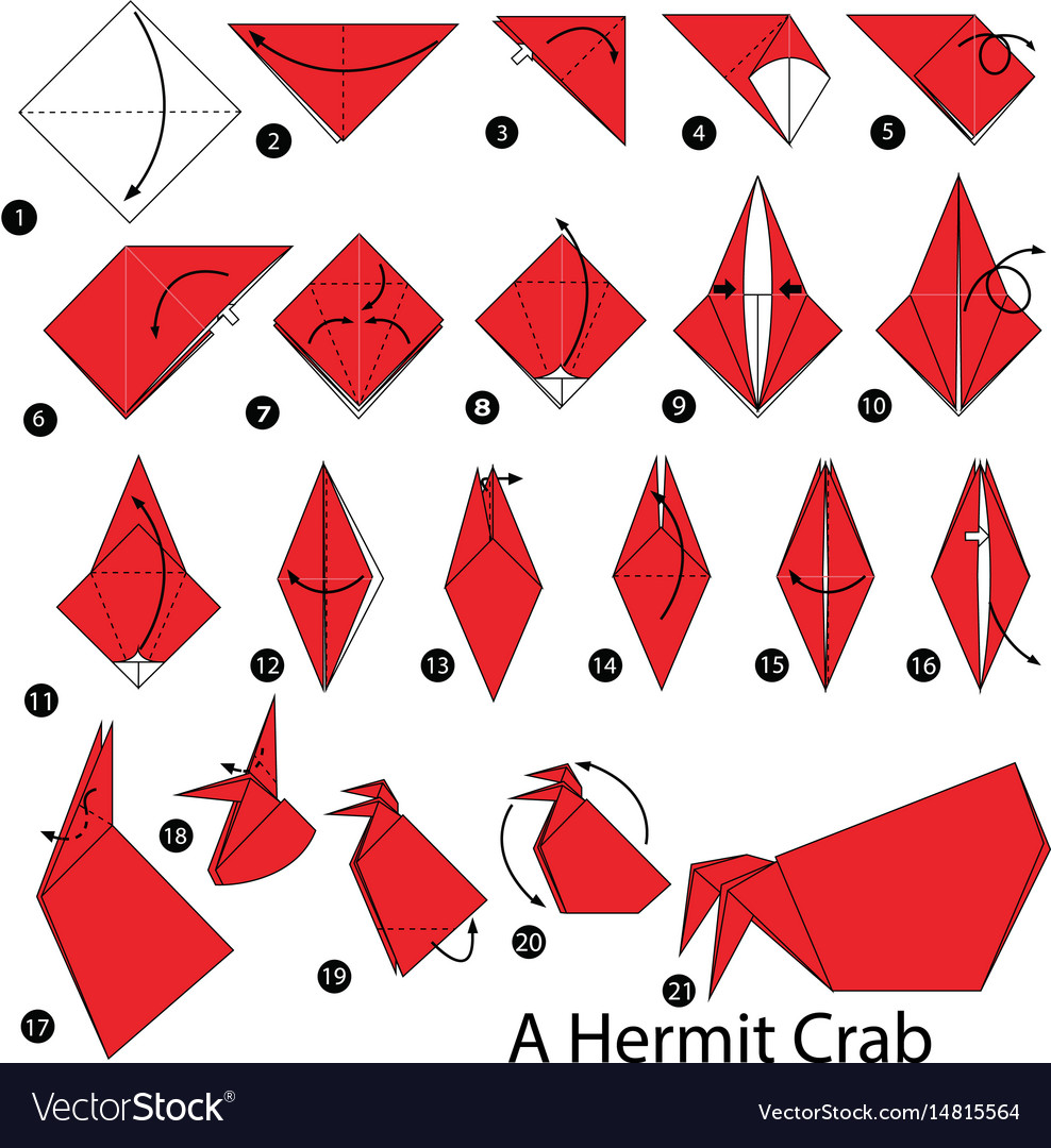 Instructions How To Make Origami A Hermit Crab Vector Image