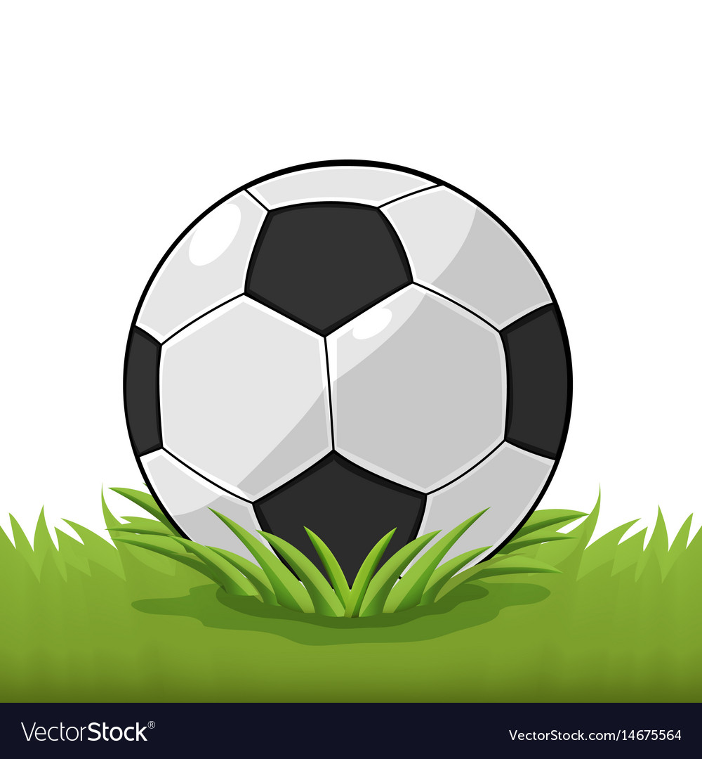 Soccer ball field grass cartoon vector image