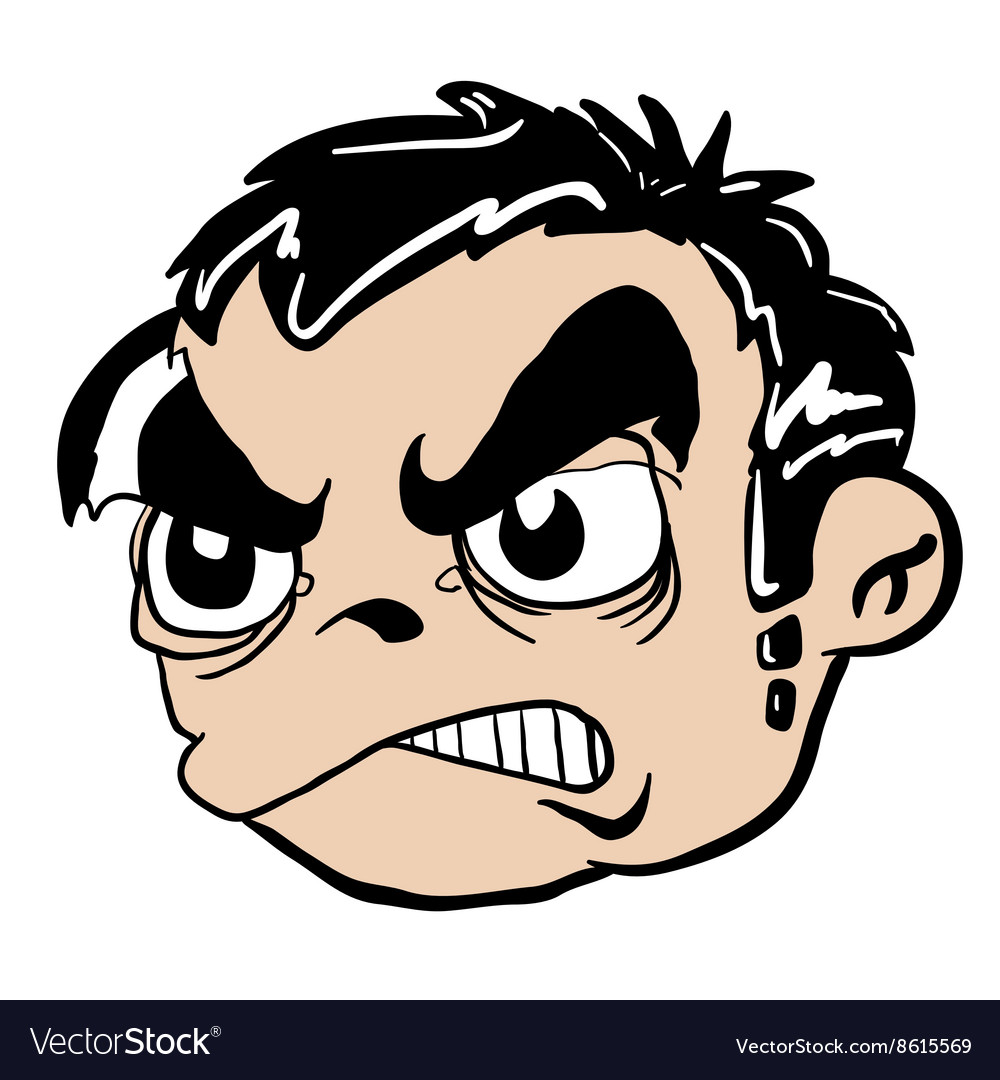 Angry boy head vector image