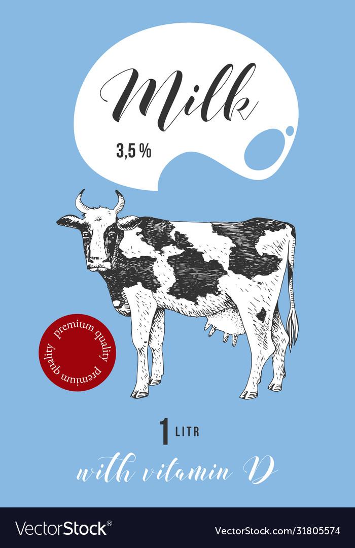 Milk label design with hand drawn cow
