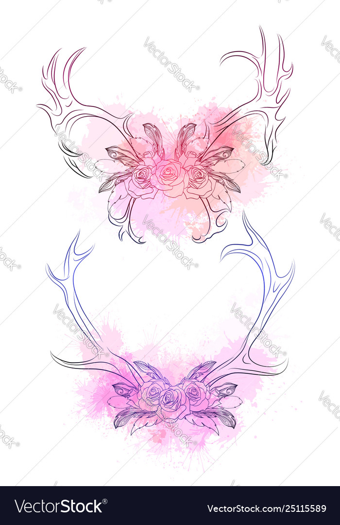 Set deer horns with feather rose and gentle