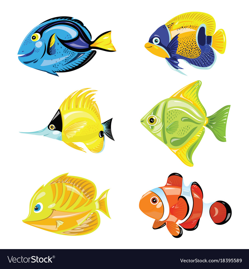 Set of cartoon fish collection of cute colored vector image