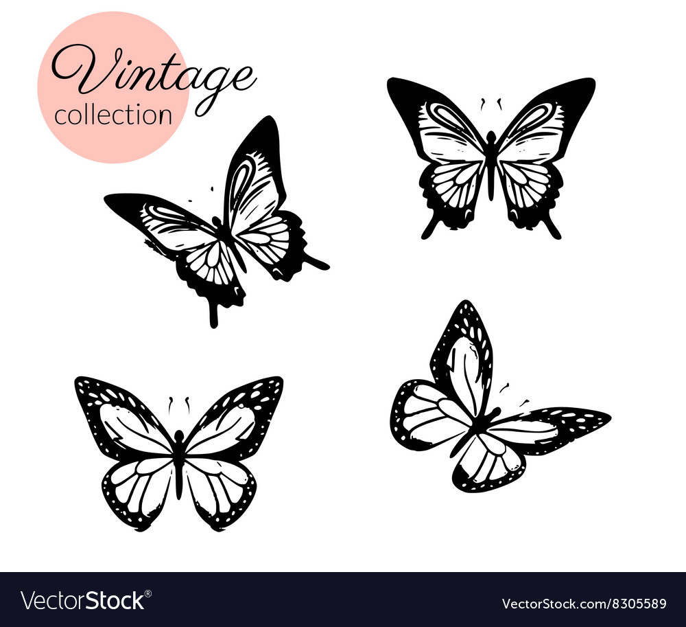 Set of four black and white butterflies silhouette