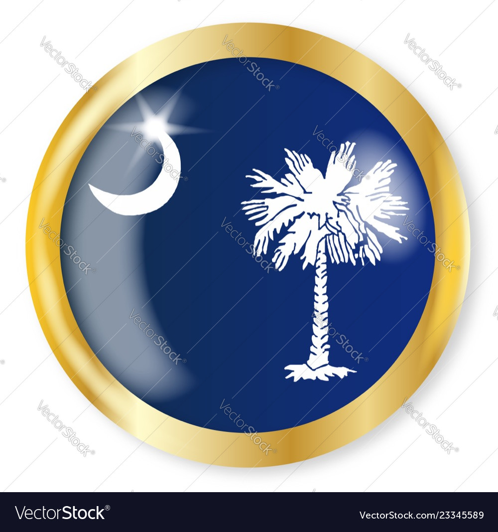 South Carolina Flag Button Royalty Free Vector Image