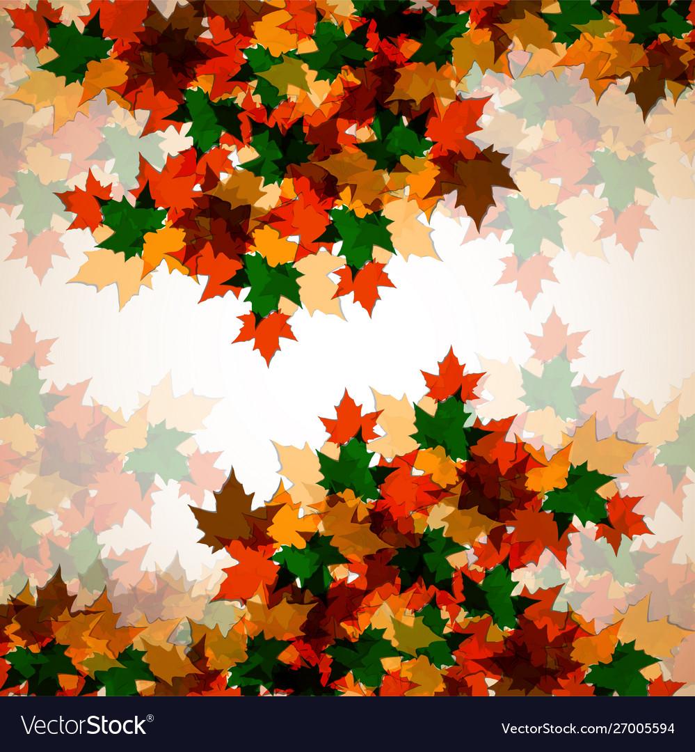 Autumn background maple leaves colofrul image