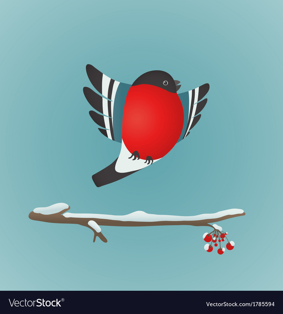 Bullfinch Flying and Ashberry Twig