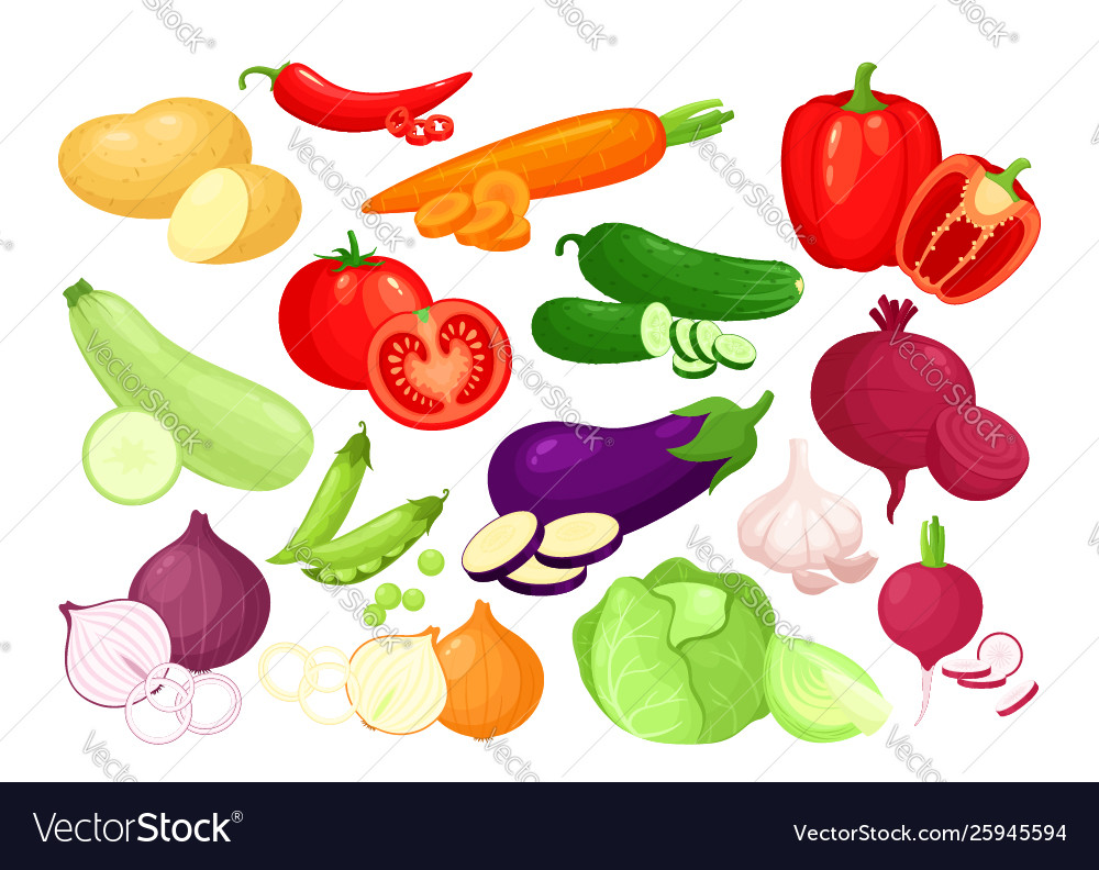 Organic fresh vegetables in cartoon style