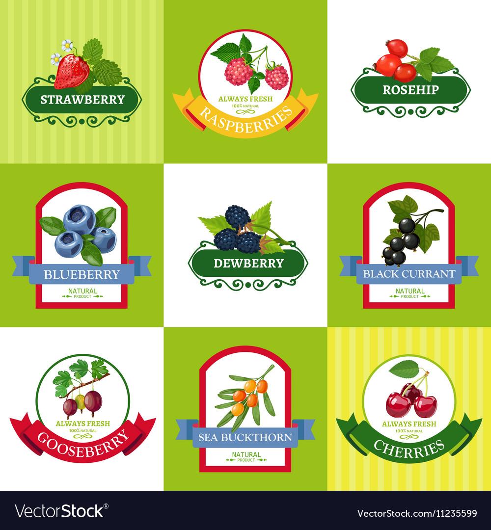 Fresh Berries Labels Flat Icons Set vector image